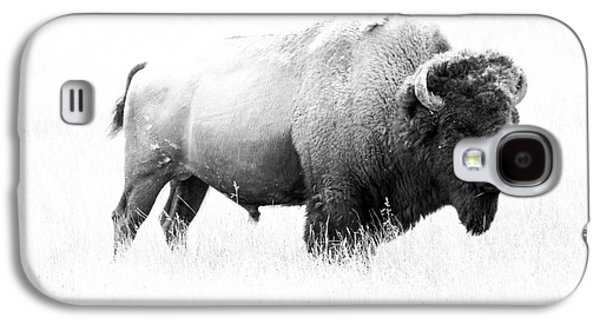 Bison Digital Art Galaxy S4 Cases - Bison - Monochrome Galaxy S4 Case by Christiane Schulze Art And Photography