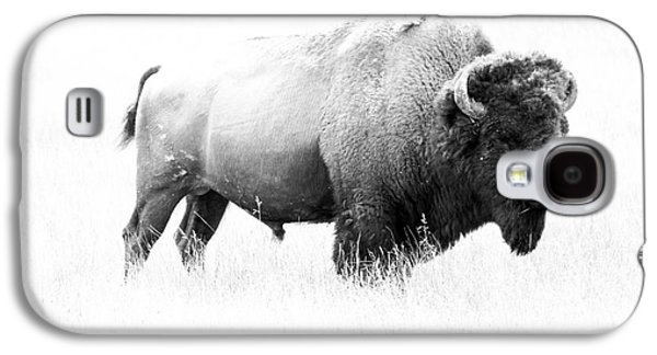 Bison Digital Galaxy S4 Cases - Bison - Monochrome Galaxy S4 Case by Christiane Schulze Art And Photography