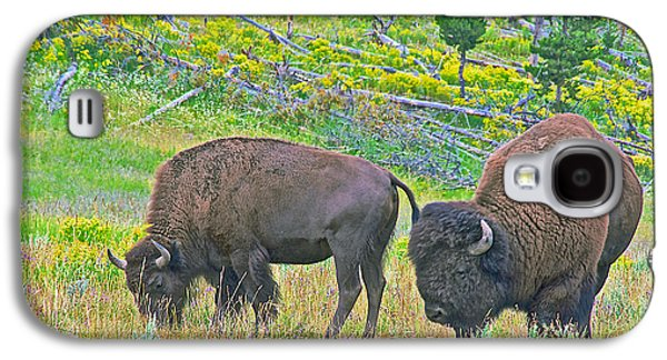 Bison Digital Art Galaxy S4 Cases - Bison Pair in Hayden Valley in Yellowstone National Park-Wyoming  Galaxy S4 Case by Ruth Hager