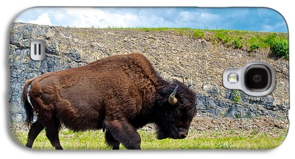 Bison Digital Art Galaxy S4 Cases - Bison Plodding along on Alaska Highway-BC-Canada Galaxy S4 Case by Ruth Hager