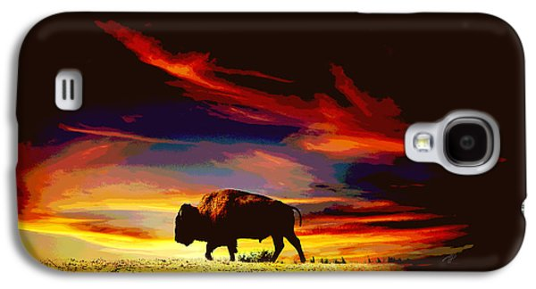 Bison Digital Galaxy S4 Cases - Bison Sunset  Galaxy S4 Case by Ann Powell