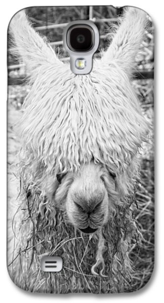 Llama Digital Galaxy S4 Cases - Black and White Alpaca Photograph Galaxy S4 Case by Keith Webber Jr