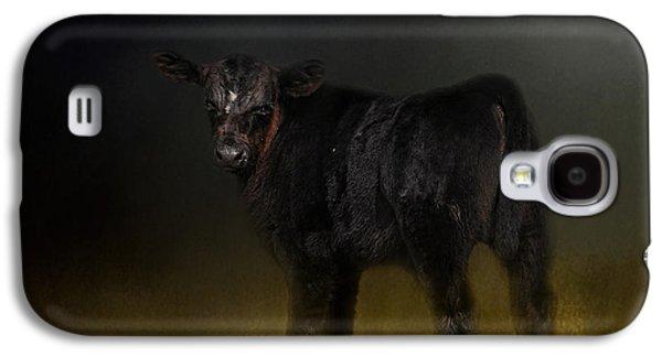 Black Angus Galaxy S4 Cases - Black Angus Calf In The Moonlight Galaxy S4 Case by Jai Johnson