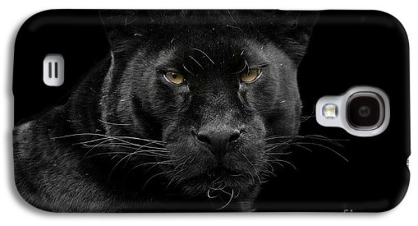 Cats Pyrography Galaxy S4 Cases - Black beauty Galaxy S4 Case by Gea Strucks