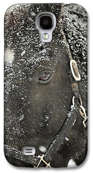 Snow Galaxy S4 Cases - Black Beauty in a Blizzard Galaxy S4 Case by Carrie Ann Grippo-Pike