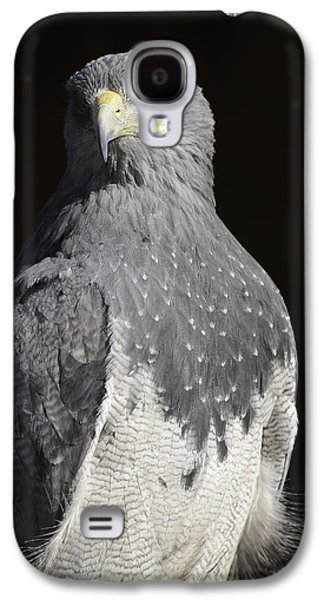 Black Chested Buzzard-eagle No 1 Galaxy S4 Case by Andy-Kim Moeller