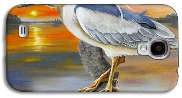 River Jordan Paintings Galaxy S4 Cases - Black Crowned Night Heron At The Jordan Galaxy S4 Case by Phyllis Beiser