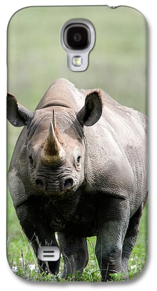 One Horned Rhino Galaxy S4 Cases - Black Rhinoceros Diceros Bicornis Galaxy S4 Case by Panoramic Images
