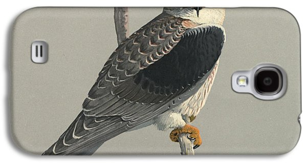 Ornithology Paintings Galaxy S4 Cases - Black Shouldered Kite Galaxy S4 Case by Louis Agassiz Fuertes