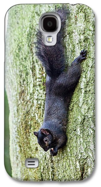Black Squirrel Eating A Nut Galaxy S4 Case by John Devries