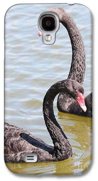 Swan Pair Galaxy S4 Cases - Black Swan Pair Galaxy S4 Case by Carol Groenen