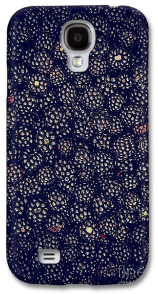 Rosaceae Galaxy S4 Cases - Blackberries Galaxy S4 Case by Tim Gainey