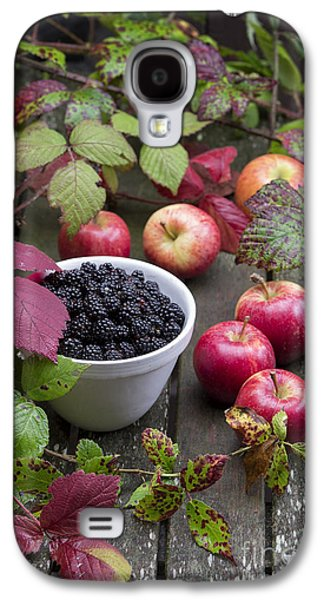 Rosaceae Galaxy S4 Cases - Blackberry and Apple Galaxy S4 Case by Tim Gainey
