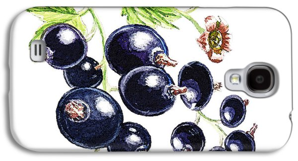 Nature Study Paintings Galaxy S4 Cases - Blackcurrant Berries  Galaxy S4 Case by Irina Sztukowski