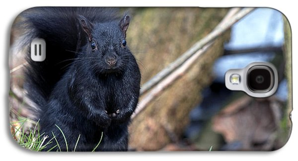 Blackie Galaxy S4 Case by Sharon Talson