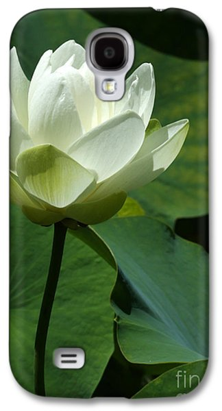 Florida Flowers Galaxy S4 Cases - Blooming White Lotus Galaxy S4 Case by Sabrina L Ryan