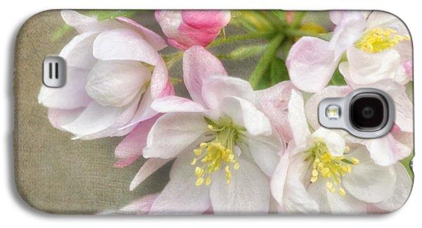 Cherry Blossoms Galaxy S4 Cases - Blossom Festival Galaxy S4 Case by Kim Hojnacki
