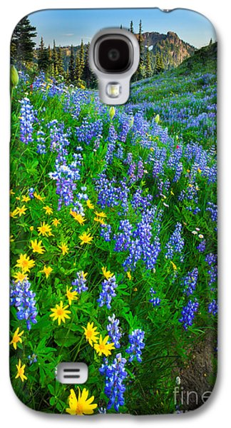 Landscapes Photographs Galaxy S4 Cases - Blue and Yellow Hillside Galaxy S4 Case by Inge Johnsson
