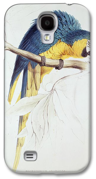 Nature Study Paintings Galaxy S4 Cases - Blue and Yellow Macaw Galaxy S4 Case by Edward Lear