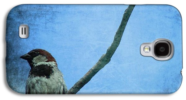 Sparrow On Blue Galaxy S4 Case by Dan Sproul