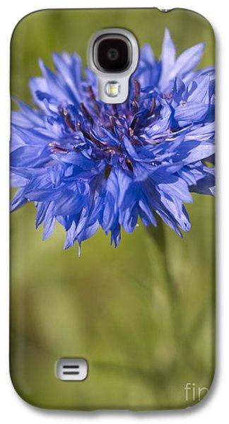 Genus Galaxy S4 Cases - Blue Cornflower Galaxy S4 Case by Tony Cordoza