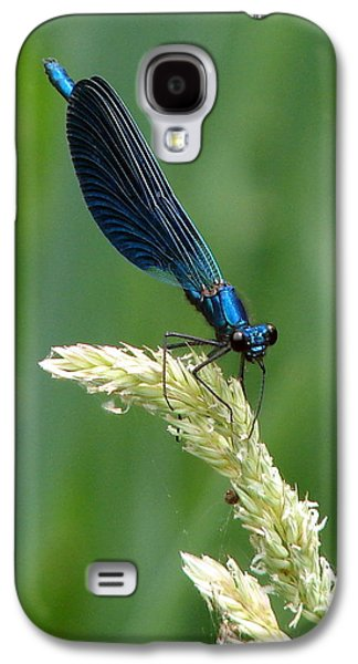 Demoiselles Galaxy S4 Cases - Blue Damselfly Galaxy S4 Case by Ramona Johnston