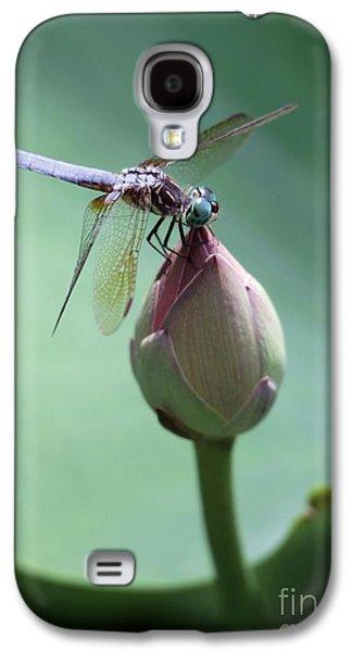 Dragon Photographs Galaxy S4 Cases - Blue Dragonflies Love Lotus Buds Galaxy S4 Case by Sabrina L Ryan