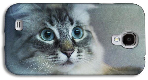 Square Format Galaxy S4 Cases - Blue Eyed Queen Galaxy S4 Case by Priska Wettstein