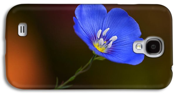 Flowers Photographs Galaxy S4 Cases - Blue Flax Blossom Galaxy S4 Case by Iris Richardson