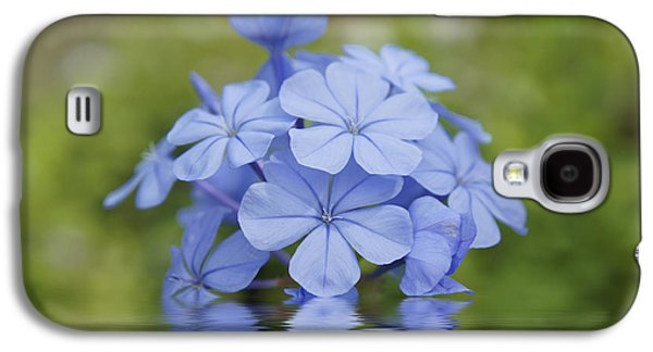 Leaf Drawings Galaxy S4 Cases - Blue Flowers Galaxy S4 Case by Aged Pixel