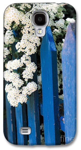 Quaint Photographs Galaxy S4 Cases - Blue garden fence with white flowers Galaxy S4 Case by Elena Elisseeva