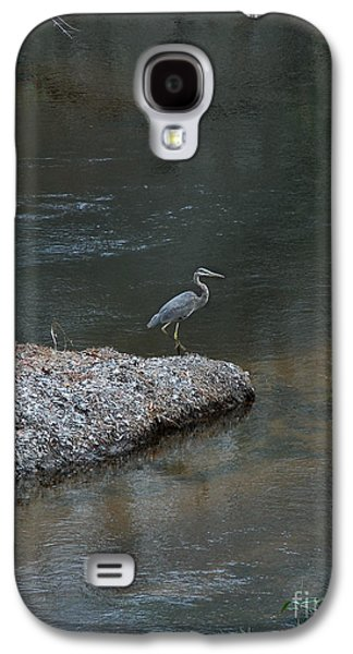 Photos Of Birds Galaxy S4 Cases - Blue Heron Galaxy S4 Case by Skip Willits