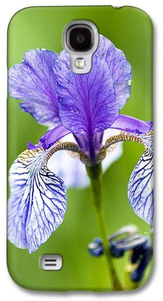 Garden Photographs Galaxy S4 Cases - Blue Iris Galaxy S4 Case by Frank Tschakert
