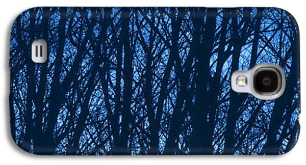 Nature Abstract Galaxy S4 Cases - Blue Morning Galaxy S4 Case by Diane Diederich