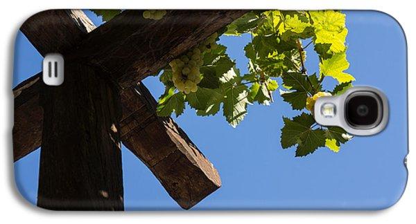 Blue Sky Grape Harvest - Thinking Of Fine Wine Galaxy S4 Case by Georgia Mizuleva