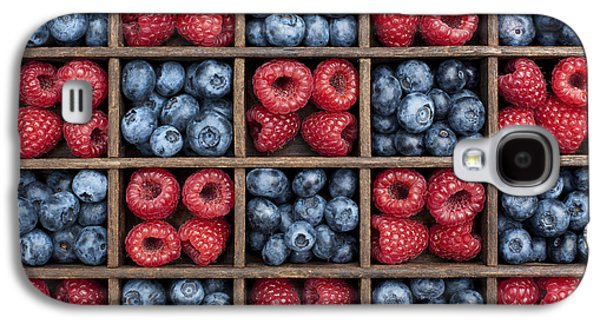 Blueberries And Raspberries  Galaxy S4 Case by Tim Gainey