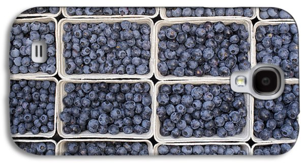 Harvest Art Galaxy S4 Cases - Blueberries Galaxy S4 Case by Tim Gainey
