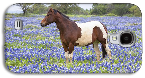 Horse Images Galaxy S4 Cases - Bluebonnets and Horses 3 Galaxy S4 Case by Rob Greebon