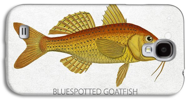 Aquarium Fish Galaxy S4 Cases - Bluespotted Goatfish Galaxy S4 Case by Aged Pixel
