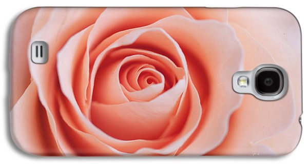Soft Photographs Galaxy S4 Cases - Blush Rose Galaxy S4 Case by Ana V  Ramirez