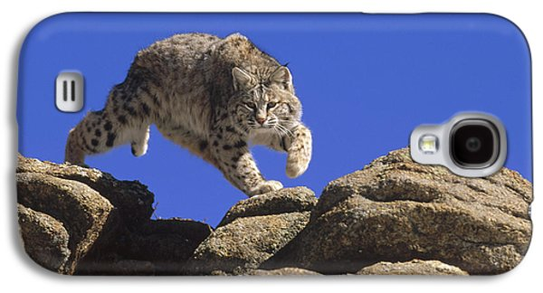 Lynx Rufus Galaxy S4 Cases - Bobcat Leaping From Rocks Colorado Galaxy S4 Case by Konrad Wothe