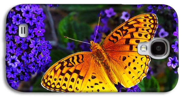 Photographic Art Galaxy S4 Cases - Boothbay Butterfly Galaxy S4 Case by Bill Caldwell -        ABeautifulSky Photography