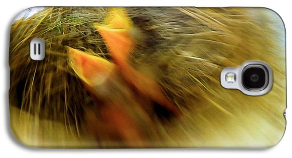 Abstract Digital Art Galaxy S4 Cases - Born To Fly Galaxy S4 Case by Robyn King