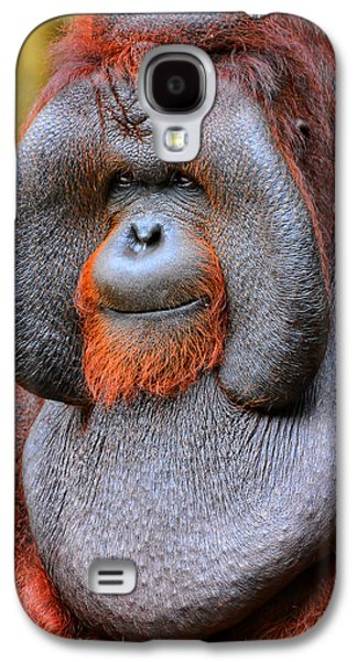 Bornean Orangutan Iv Galaxy S4 Case by Lourry Legarde