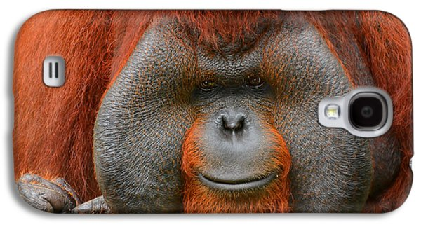 Bornean Orangutan Galaxy S4 Case by Lourry Legarde