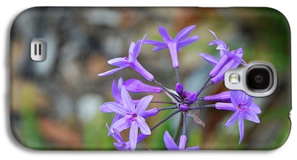 Gardening Photography Galaxy S4 Cases - Botanical Art Print - Tiny Dancers by Sharon Cummings Galaxy S4 Case by Sharon Cummings