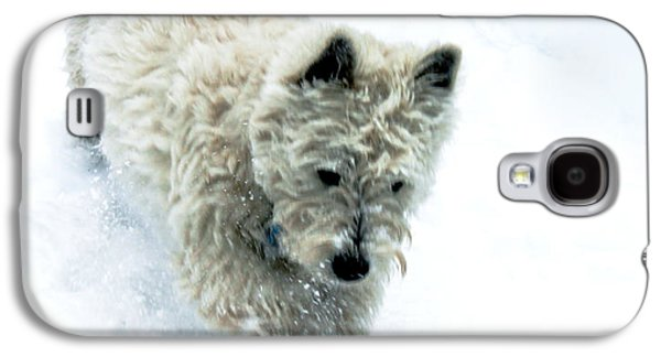 Puppies Pyrography Galaxy S4 Cases - Bounding Baby Boy Galaxy S4 Case by Susan Vineyard