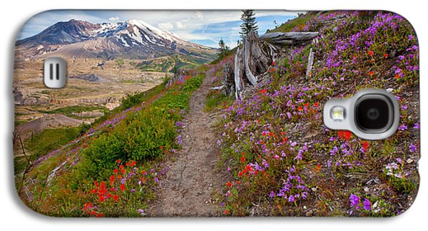 Landscape Acrylic Prints Galaxy S4 Cases - Boundry Trail Galaxy S4 Case by Darren  White