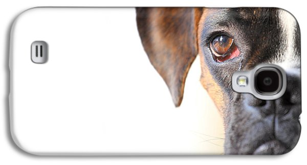 Boxer Galaxy S4 Cases - Boxer dog Galaxy S4 Case by Jana Behr