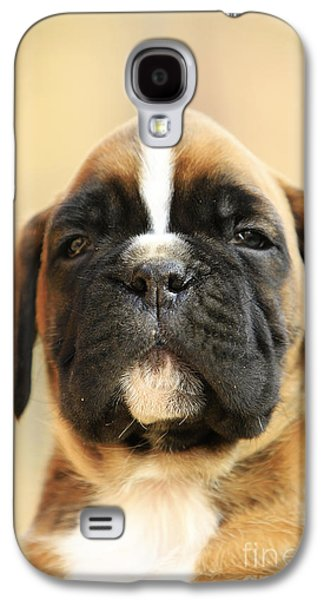 Boxer Galaxy S4 Cases - Cool puppy boxer dog Galaxy S4 Case by Dan Radi
